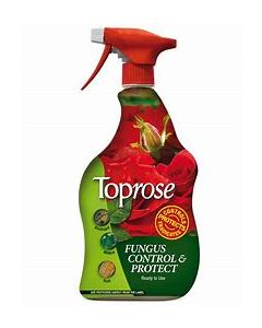 Toprose Fungus Control + Protect 1L